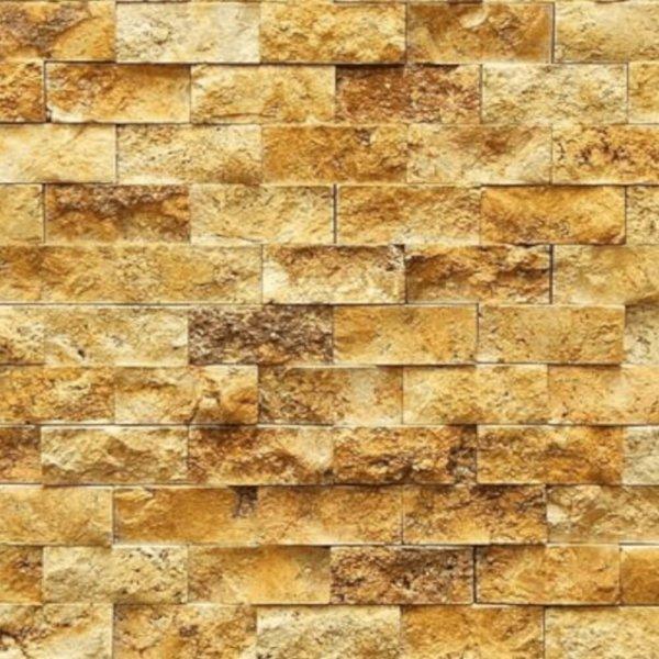 Mozaic-Scapitat