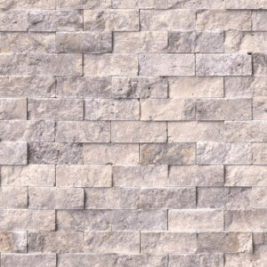 Mozaic Scapitat